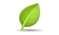 Green Invoice